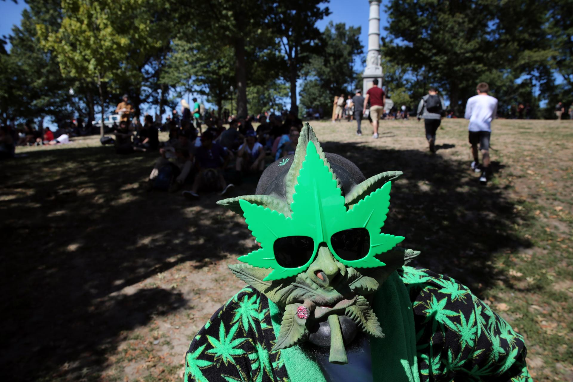 supporters of recreational use of marijuana fill the common the dameion hollis of queens new york who attended the saturday rally in boston